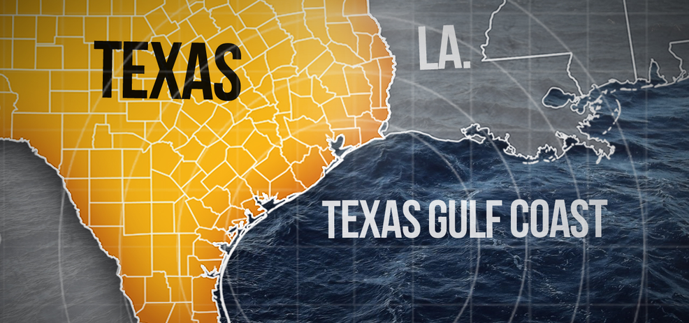 bacteria in the gulf